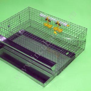 Клетка для перепелов на 30 голов: отзывы, цена