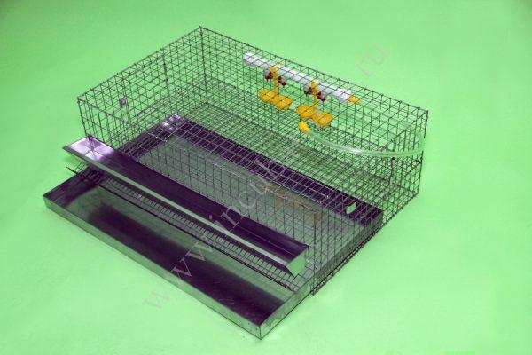 Клетка для перепелов на 30 голов (1 ярус) (КП-30)
