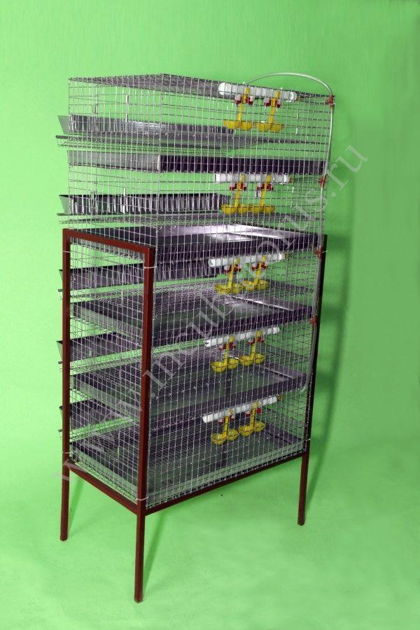 Клетка для перепелов на 150-175 голов (5 ярусов) (КП-150-5я)