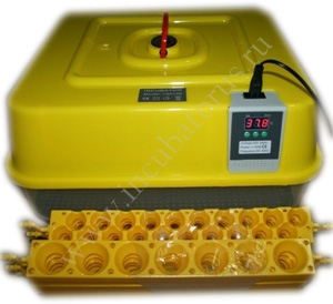 Инкубатор Janoel-42: купить, отзывы, вместимость.