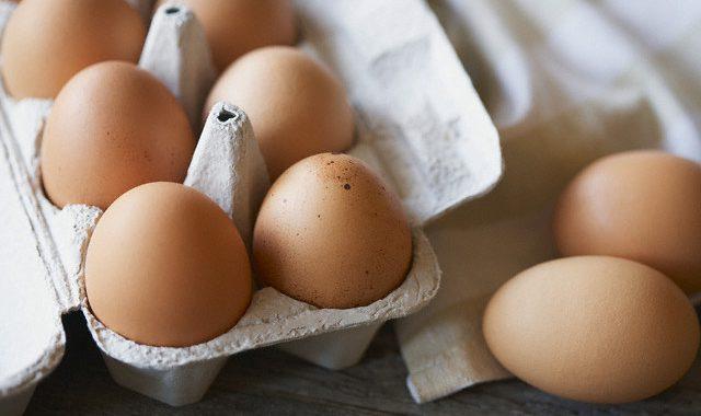 Продажа куриных яиц: заработок