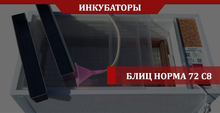 обзор инкубатора Блиц Норма 72 с8