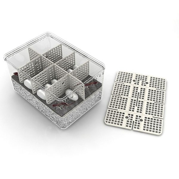 inkubator dlya yaits reptiliy rcom 60 max 3
