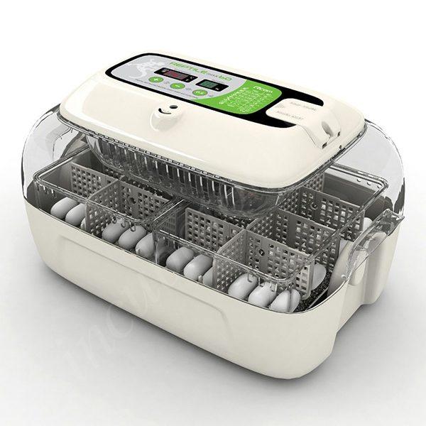 inkubator dlya yaits reptiliy rcom 60 max