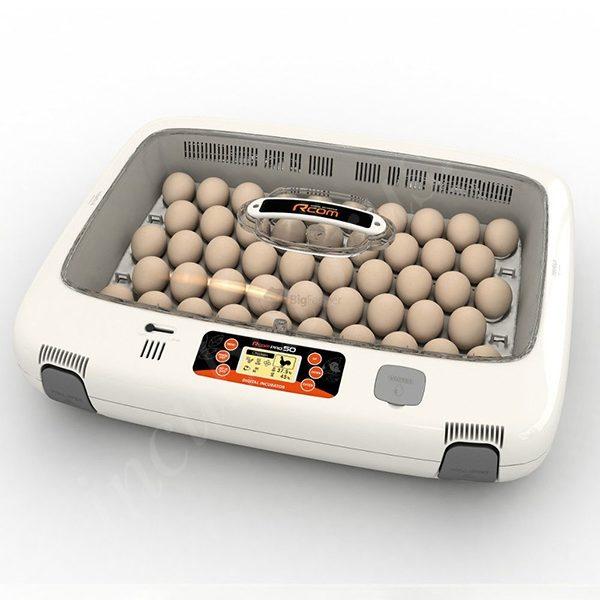 inkubator rcom 50 pro 4