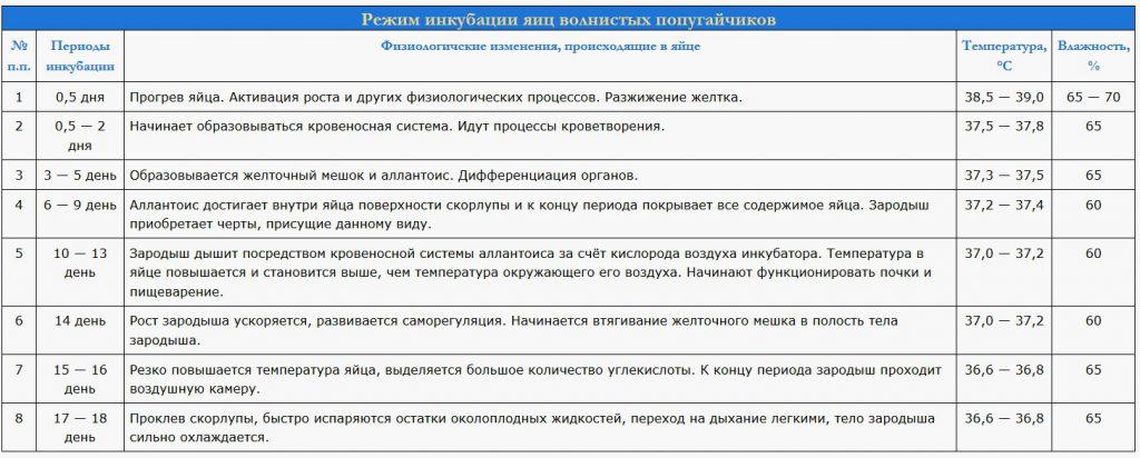 inkubatsiya yaits volnistyh popugaev
