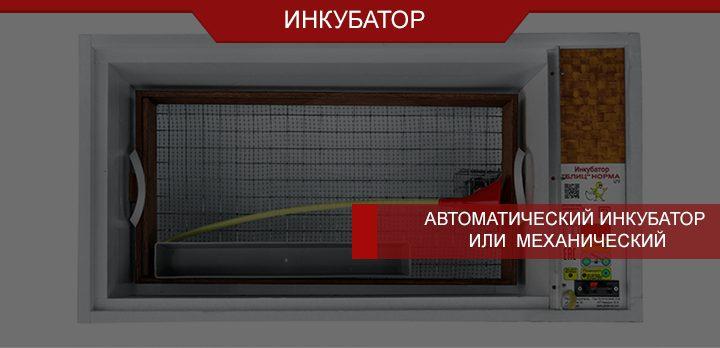 Автоматический инкубатор или ручная установка