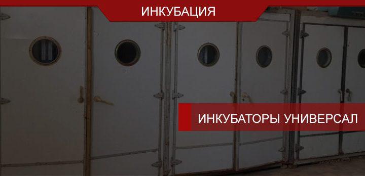 Инкубаторы «Универсал» – советская техника, неподвластная времени