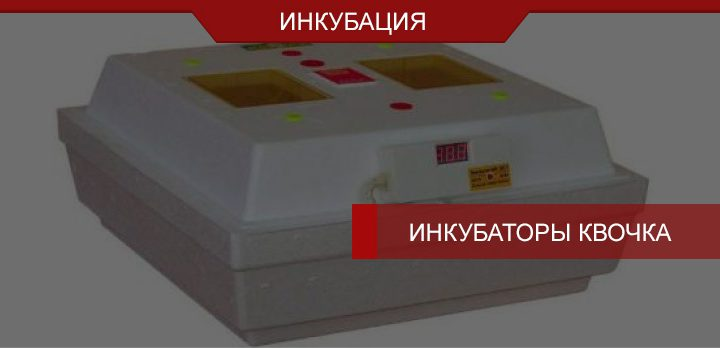 Инкубатор Квочка – с/х-техника украинского производства