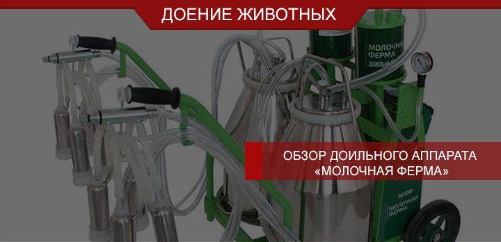 Обзор доильного аппарата «Молочная ферма»