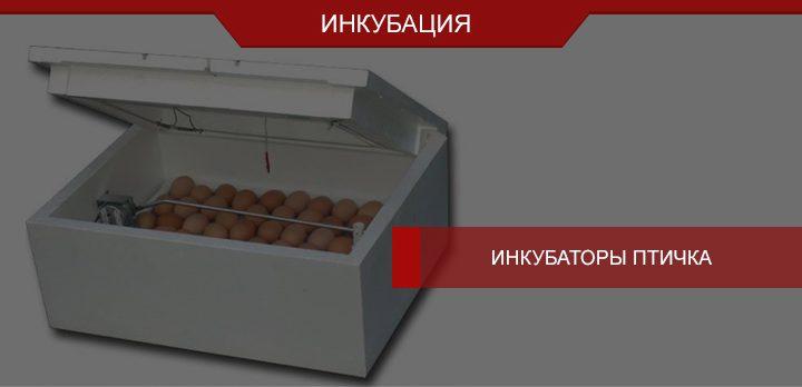 Инкубаторы Птичка от производителя Схемотехника