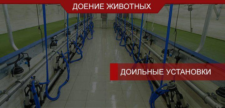 Доильные установки для малых и средних ферм
