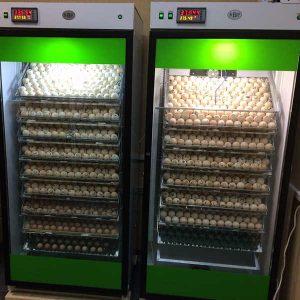 Инкубатор nbf-1500