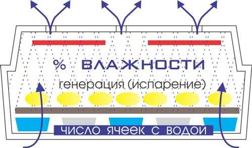 Инкубаторы Несушка