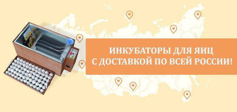 Лучший магазин инкубаторов в России