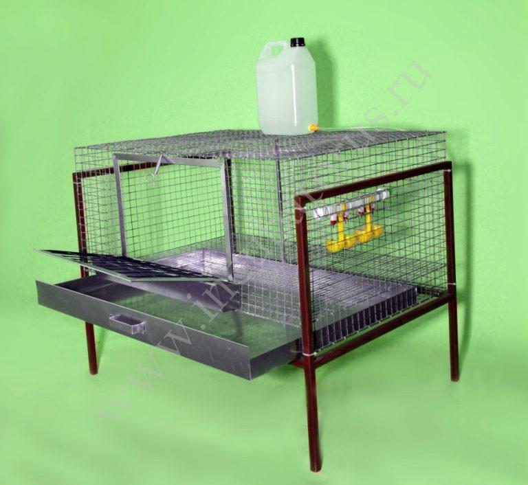 Как сделать клетку для цыплят в домашних условиях 933